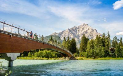 Relaunch, recovery and beyond: A prosperity framework for Alberta