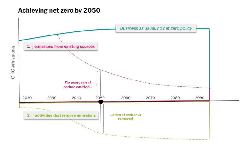 Achieving net zero by 2050, graph by BCA